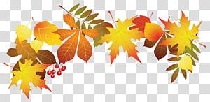 ilustração de folhas marrons, cor da folha de outono, decoração de folhas de outono PNG clipart