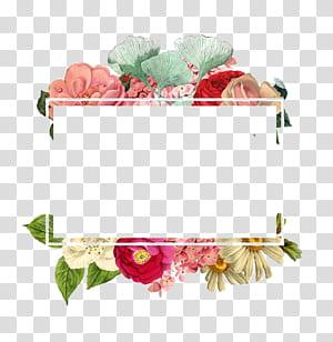 Logotipo de papel flor, borda de flores, ilustração de flor de pétalas de cores sortidas png