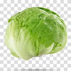 repolho verde, alface iceberg recheio salada repolho vegetal, alface png