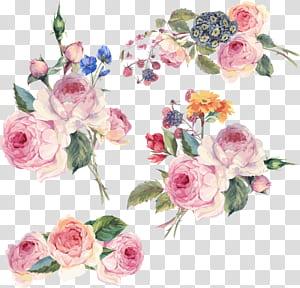Flor Design floral, flores pintadas à mão, ilustração de flores cor de rosa png