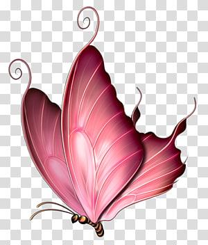 Borboleta inseto rosa roxo, elementos de crianças de padrão de borboleta, sonho de borboleta dos desenhos animados, borboleta rosa png