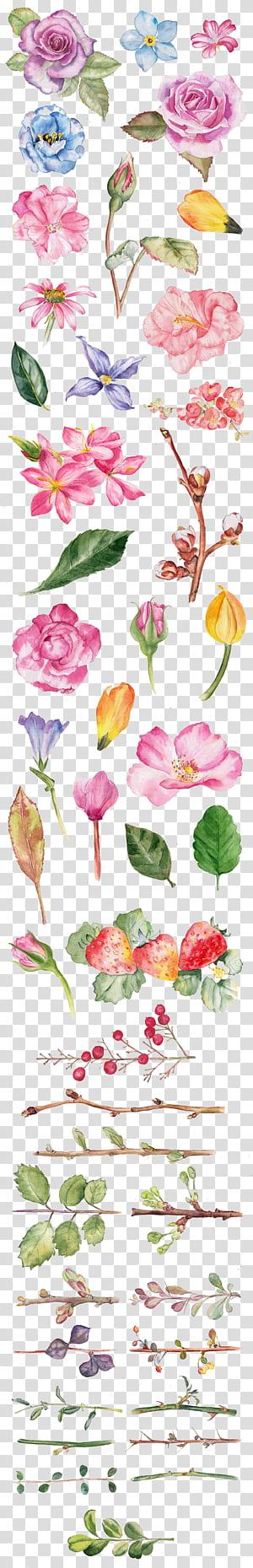 Pintura em aquarela Flor desenho ilustração, aquarela rosa, flores de cores sortidas com fundo azul PNG clipart