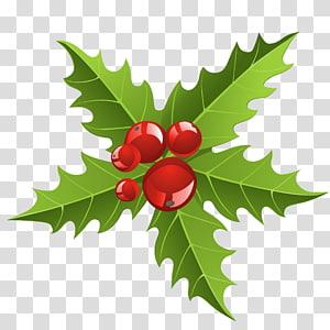 ilustração de fruta vermelha e folha verde, Guirlanda de decoração de Natal Papel de Papai Noel, elemento de visco Chrismtmas png