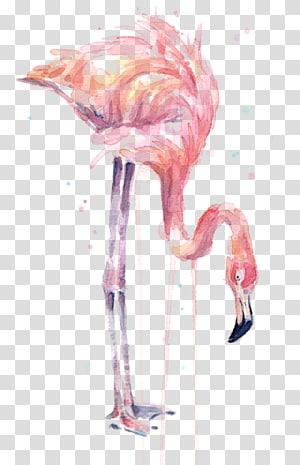 ilustração de flamingo, pintura em aquarela Flamingo Art Printmaking, flamingo em aquarela png