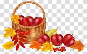 frutas na ilustração de cesta, cor de folha de outono frutas, cesta com frutas e folhas de outono png