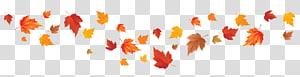 folha de bordo laranja, cor da folha de outono cor da folha de outono bordo vermelho folha de bordo, folhas de outono PNG clipart