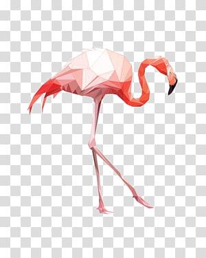 gráficos de flamingo rosa, Flamingo Pintura em Aquarela, Gravura Arte, Flamingo em Aquarela png