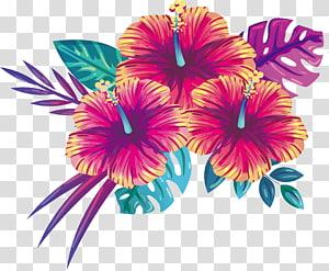 Florescendo flores de verão PNG clipart
