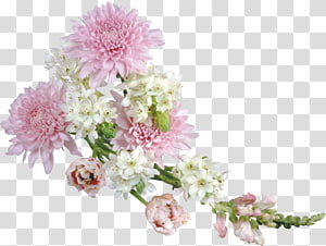 Flor, arranjo de flores macias, flores de pétalas rosa e brancas PNG clipart