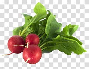 três rabanetes vermelhos, odor dos pés, saúde alimentar, rabanete PNG clipart