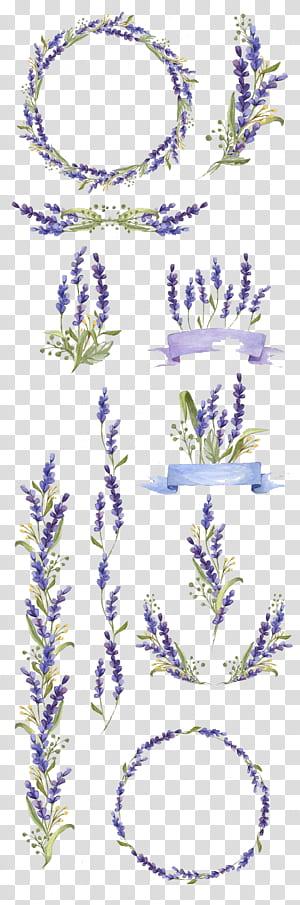 Pintura em aquarela Flower Art Lavender, flores pintadas à mão, colagem de lote de decoração floral roxa e verde png