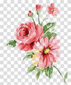 flores vermelhas, pintura em aquarela almofada, flor da aguarela png