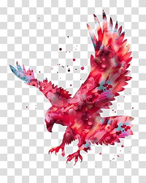 Pintura da aguarela da águia americana gravura, águia de tinta png