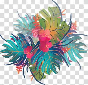 Pintura em aquarela Trópicos, plantas tropicais em aquarela, azul, verde e azul-petróleo deixa illustraiton digital png