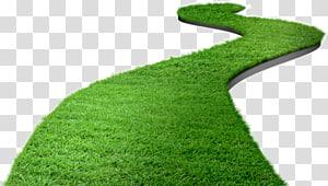 tufo de grama verde, arquivo de computador do gramado, estrada do gramado png