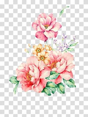 Pintura em aquarela de flores, aquarela floral, rosa flores pintura PNG clipart