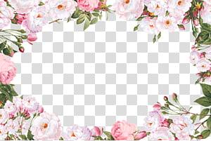 Tipo de script fonte de caligrafia sem serifa, fronteira de flor, ilustração de quadro de flores de pétalas brancas png
