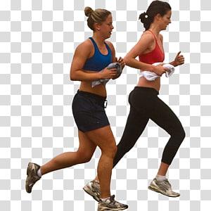 Exercício físico Exercício anaeróbico Aptidão física Endurance, People Sport png