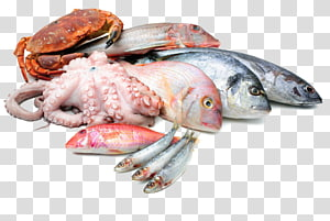 arquivo de frutos do mar, frutos do mar peixe assado como comida Lula como comida, frutos do mar PNG clipart
