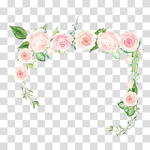 Flor rosa rosa verde, fronteira rosa, layout de flores de pétalas de rosa png
