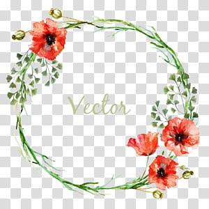 Círculo de flor, borda de padrão de círculo, ilustração de grinalda com sobreposição de texto png