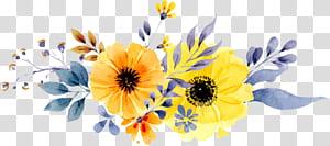 Convite de casamento Flor de papel amarelo Pintura em aquarela, teste padrão de flor margarida pintados à mão, ilustração de flores de pétalas amarelas e laranja png
