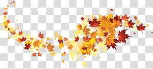 de folhas de bordo, cor da folha de outono, folhas de outono PNG clipart