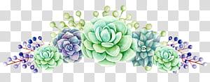 Produção de chá de flores na planta suculenta do Sri Lanka, flores, pintura de flores verdes e azuis png
