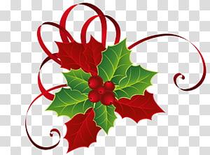 Visco Natal, Natal vermelho verde Visco, ilustração de folha verde e vermelha png