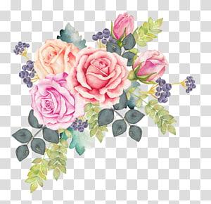 ilustração de flores de cores sortidas, aquarela flores aquarela pintura rosa, grinalda de flores em aquarela png