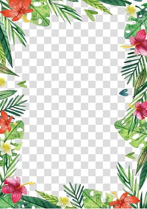 Flor do Havaí, flores e plantas do Havaí, ilustração de borda floral verde e rosa png