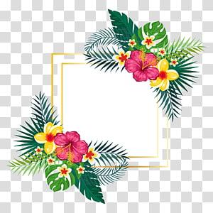 Design floral Pintura em aquarela Flor, pintados à mão aquarela verão floral fundo, pintura de flores amarelas e vermelhas png