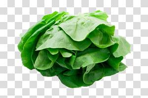 vegetal verde, vegetais de alface, vegetais frescos PNG clipart