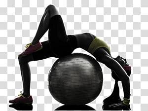 pessoa curvada na bola de estabilidade, aptidão física exercício físico bola de exercício personal trainer flexibilidade, movimento de aptidão png
