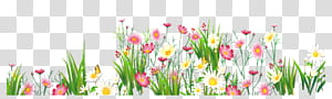 gramíneas de flores, flores e grama, amarelo e rosa flor illusration png
