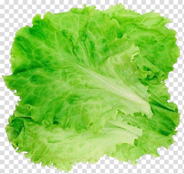alface verde, alface romana Salada de hambúrguer, alface png