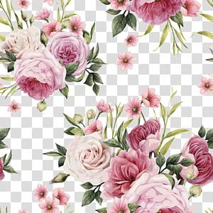 Rose Pink flowers Pink flowers Color, HD aquarela pintada à mão rosas, ilustração de rosas cor de rosa e brancas PNG clipart