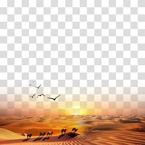 silhueta de bando de pássaros voando acima de camelos no deserto, Iniciativa One Belt One Road Maritime Silk Road Poster das regiões ocidentais, The Silk Road png