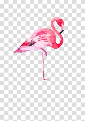 ilustração de flamingo rosa, pintura em aquarela Flamingo Canvas Printing, flamingo png
