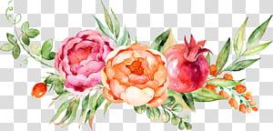 Pintura em aquarela Flor de uva, aquarela decoração floral, vermelho, rosa e amarelo flores pintura png