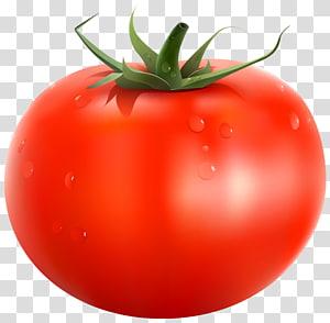 Papua Nova Guiné tomate vegetal, tomate, tomate vermelho ilustração PNG clipart