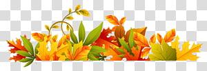 Arquivo de computador do outono, borda do outono, flores amarelas, laranja e verdes PNG clipart