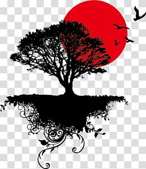 silhueta da ilustração de árvores, arte da árvore, pôr do sol PNG clipart