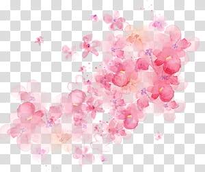 Pintura em aquarela, sombreamento de flores em aquarela, flores com pétalas de rosa PNG clipart