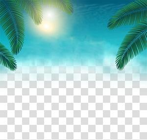 Ilustração de folhas de palmeira, Poster Verão, Verão Posters Elementos decorativos png