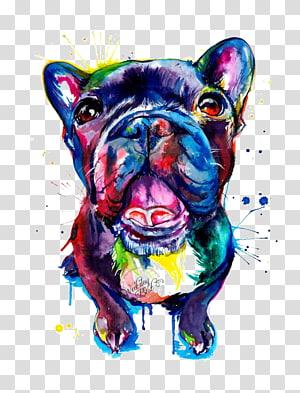 buldogue francês multicolorido, buldogue francês Pug Pit bull Pet, cão de estimação png
