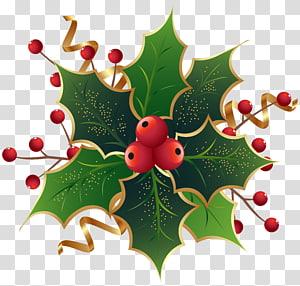ilustração de cerejas vermelhas, véspera de Natal no porto de sexta-feira azevinho comum Mark Nagle The Ivy Green, azevinho de azevinho de Natal png