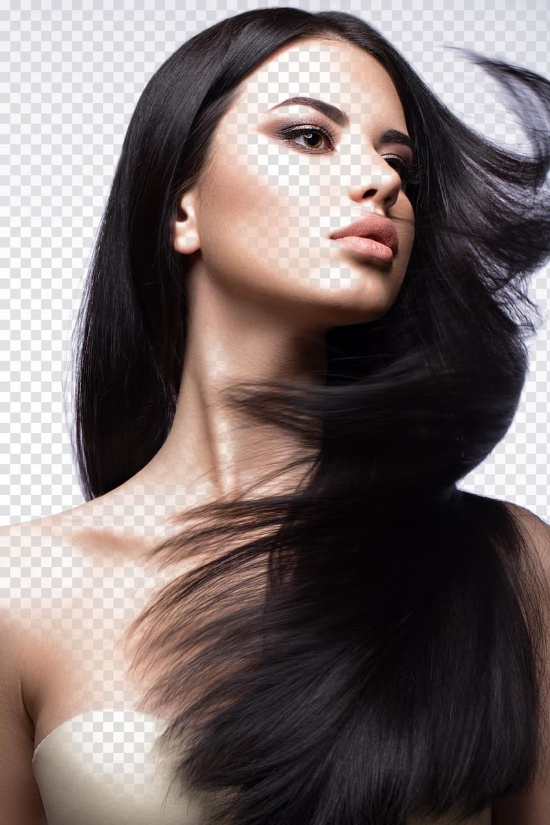 Penteado Coloração de cabelo Integrações artificiais com cabelos Shampoo, beleza de cabelos bonitos, de mulher de cabelos pretos PNG clipart