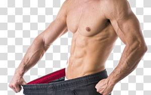 Obesidade abdominal Abdômen Perda de peso Músculo tecido adiposo, outros png