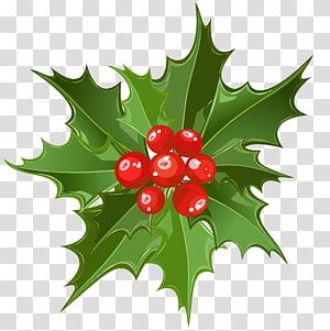 ilustração de visco, visco Natal Papai Noel, arte de visco de Natal png